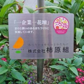 柿原組様夏花壇